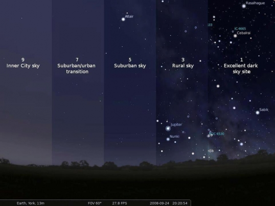 Get out of the city every once in a while to really see the night's sky.